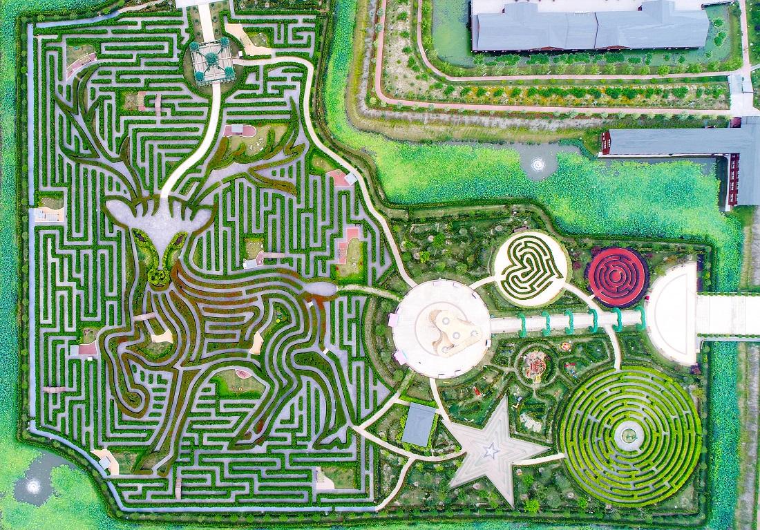 绿化迷宫设计平面图